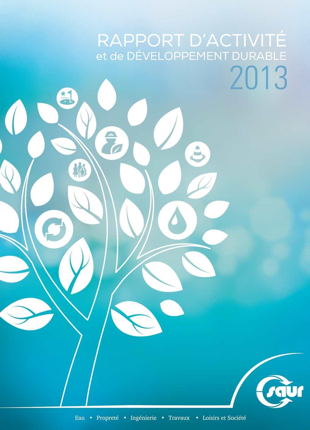 calam o rapport d 39 activit et de d veloppement durable 2013. Black Bedroom Furniture Sets. Home Design Ideas