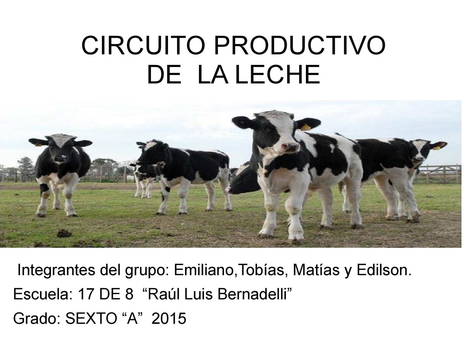 Circuito Productivo De La Leche : Calaméo circuito productivo de la leche emi mati tobi edil