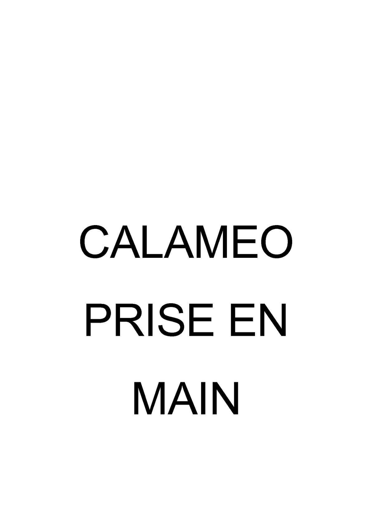 Calameo Exemple