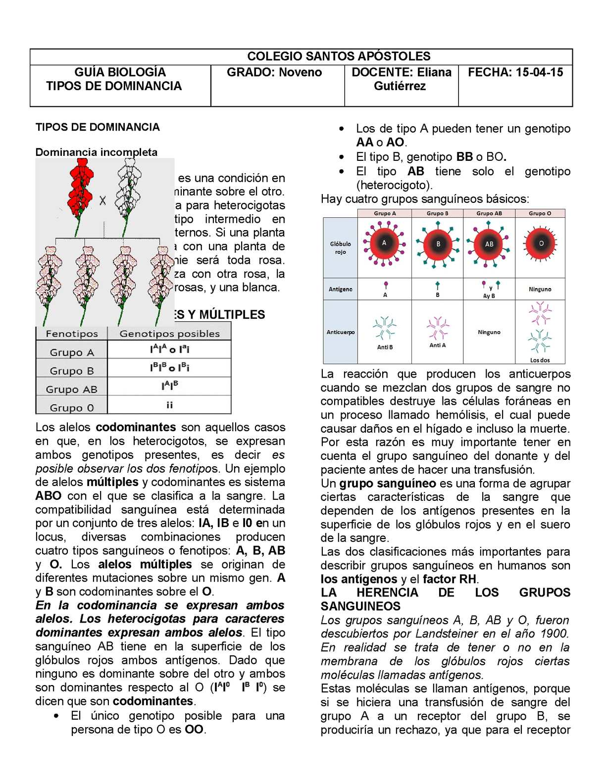 Biologia Guia Herencia Intermedia