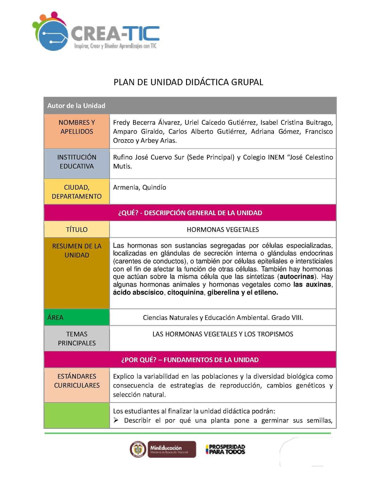 Calaméo - Plantilla Unidad Didáctica Grupal