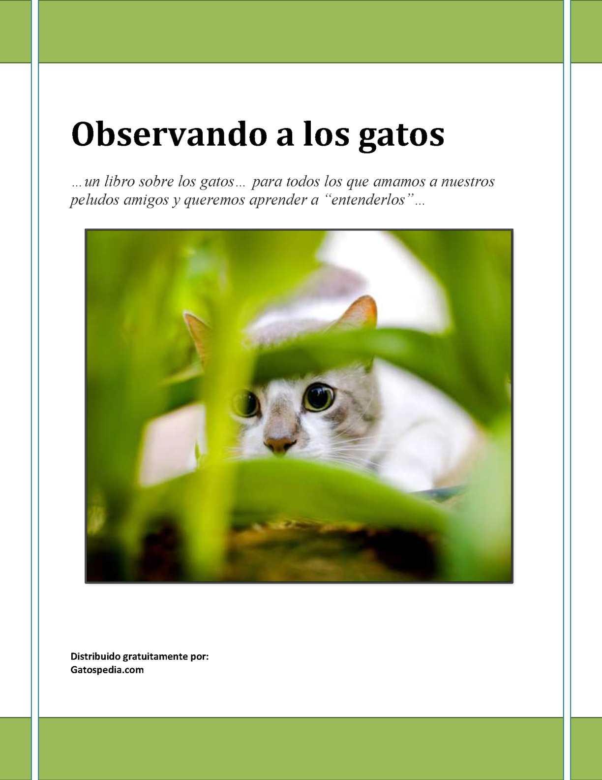 Calaméo - Observando A Los Gatos