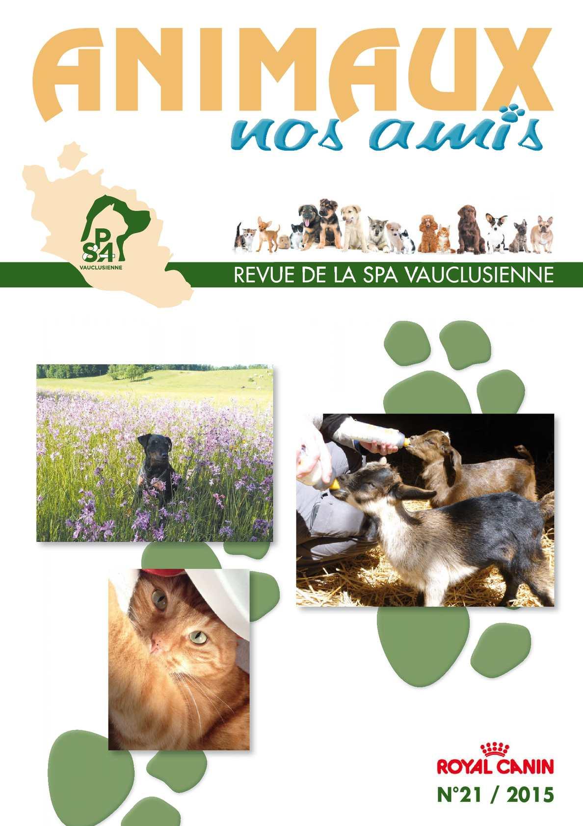 Calam o magazine animaux nos amis n 21 spa vauclusienne - Salon animaux avignon ...