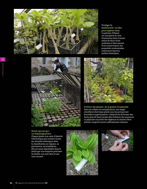 Carte Universite De Bordeaux.U Le Magazine De L Universite De Bordeaux 3 Calameo Downloader