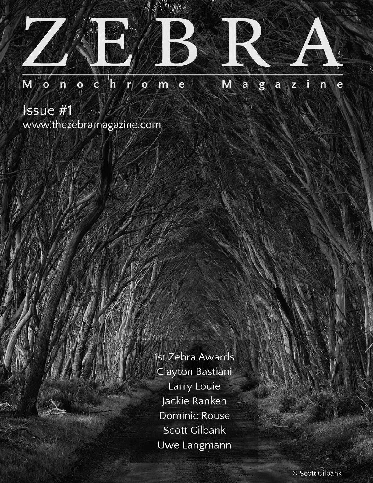 Zebra Magazine Issue 1b