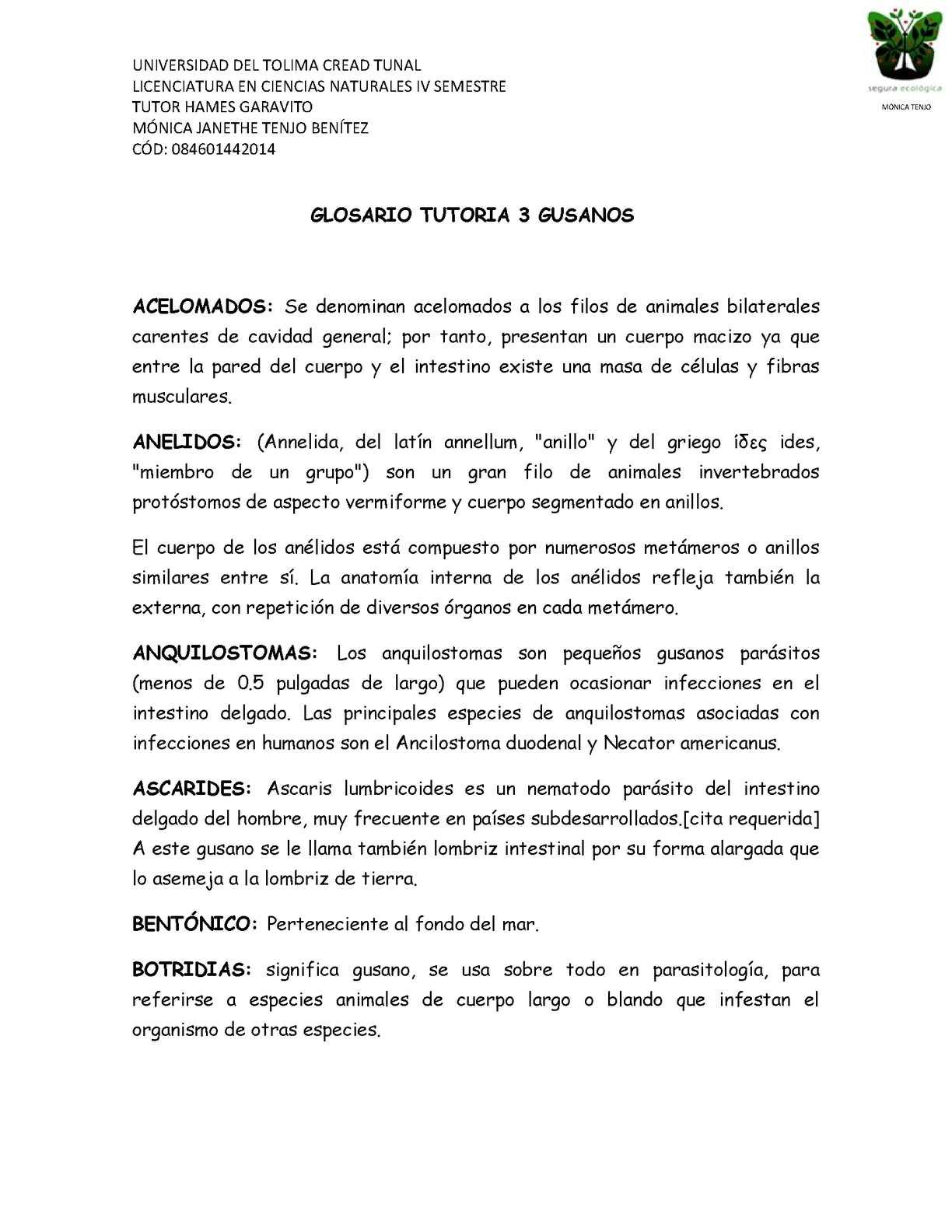 Calaméo - Glosario Tutorias 3