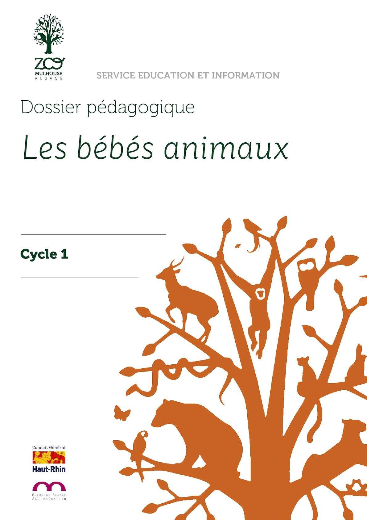 Les Bébés Animaux (cycle 1)