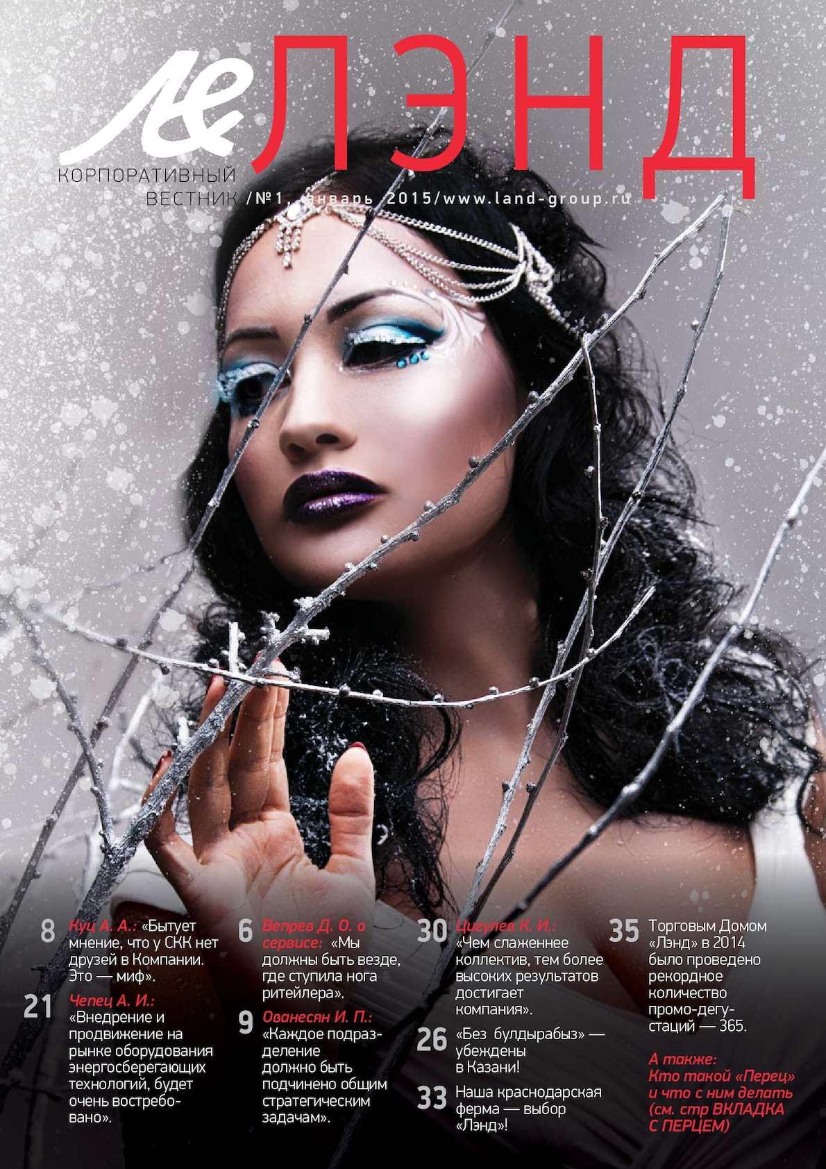 Новогодний журнал 2015