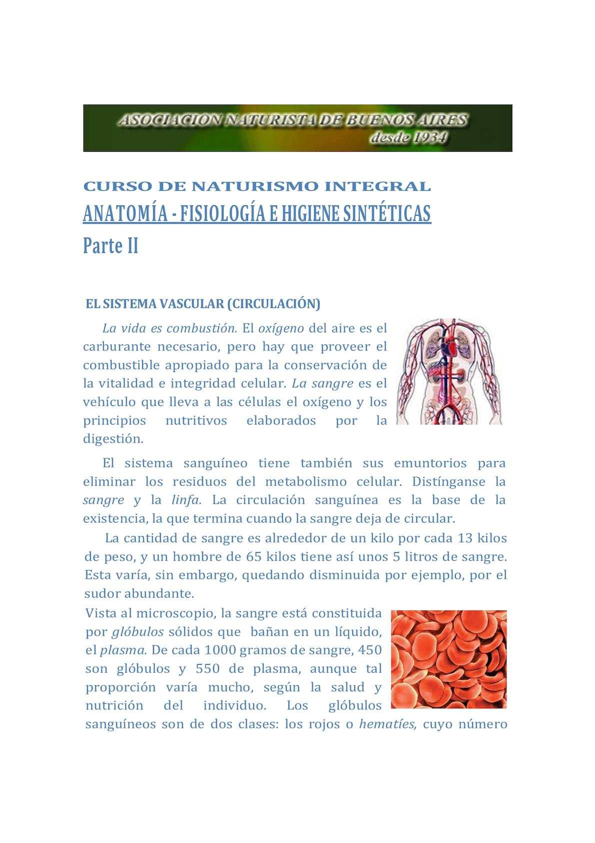 Calaméo - Clase 10 Anatomía Fisiología E Higiene Sintéticas Ii