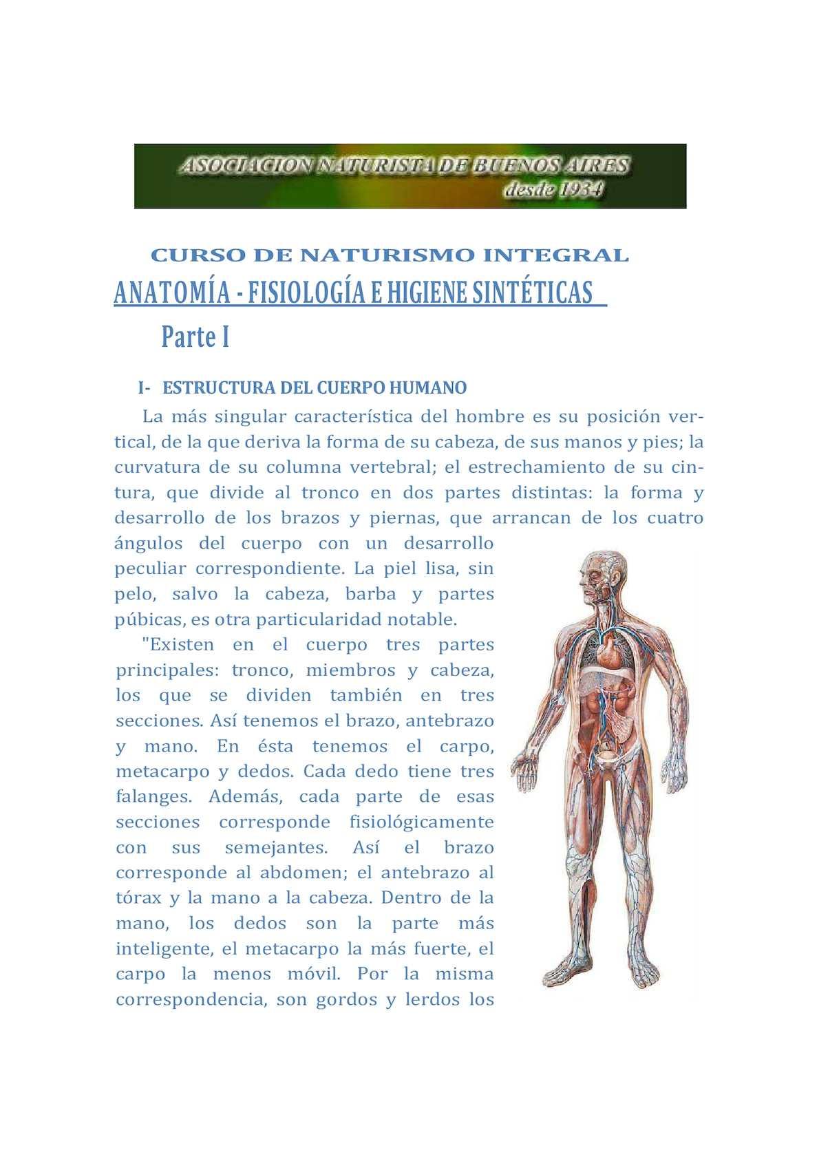 Calaméo - Clase 9 Anatomía Fisiología E Higiene Sintéticas I