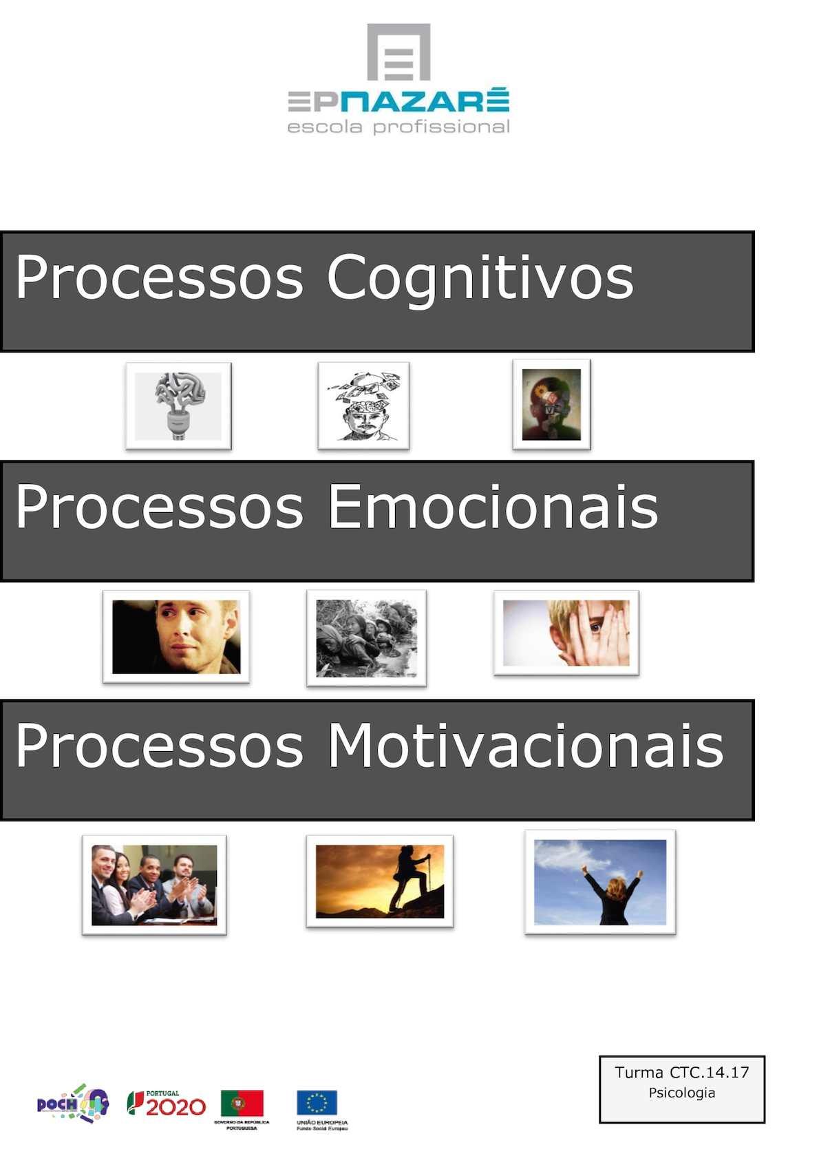 Processos Cognitivos, Emocionais e Motivacionais