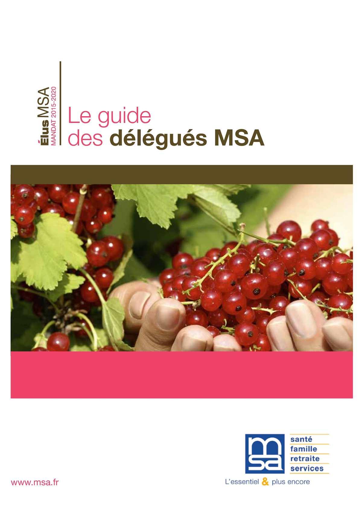 Calameo Guide Delegues Msa
