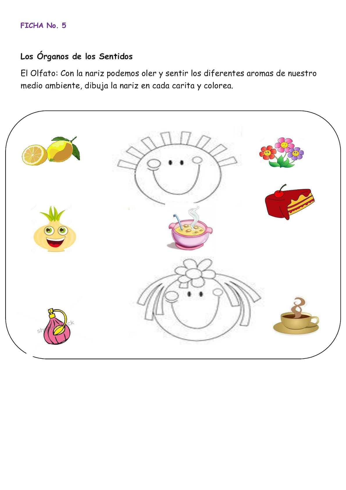 Fantástico Mis Cinco Sentidos Para Colorear Imágenes - Ideas Para ...
