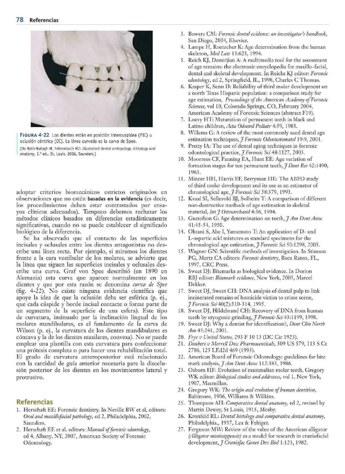 Anatomia Fisiologia Y Oclusion Dental - CALAMEO Downloader