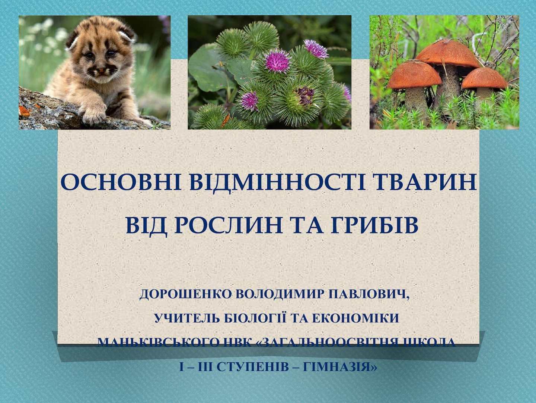 Основні відмінності тварин від рослин та грибів 1