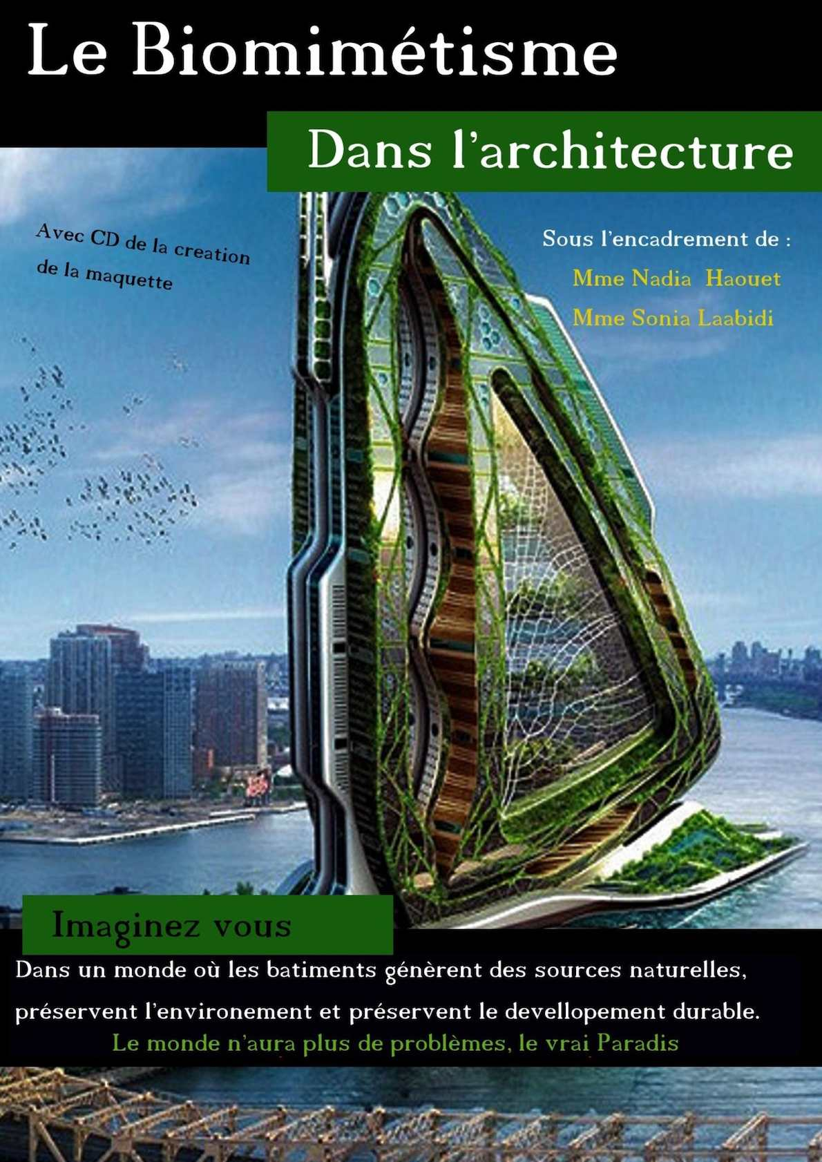 Calam o l 39 architecture biomimetique for L architecture