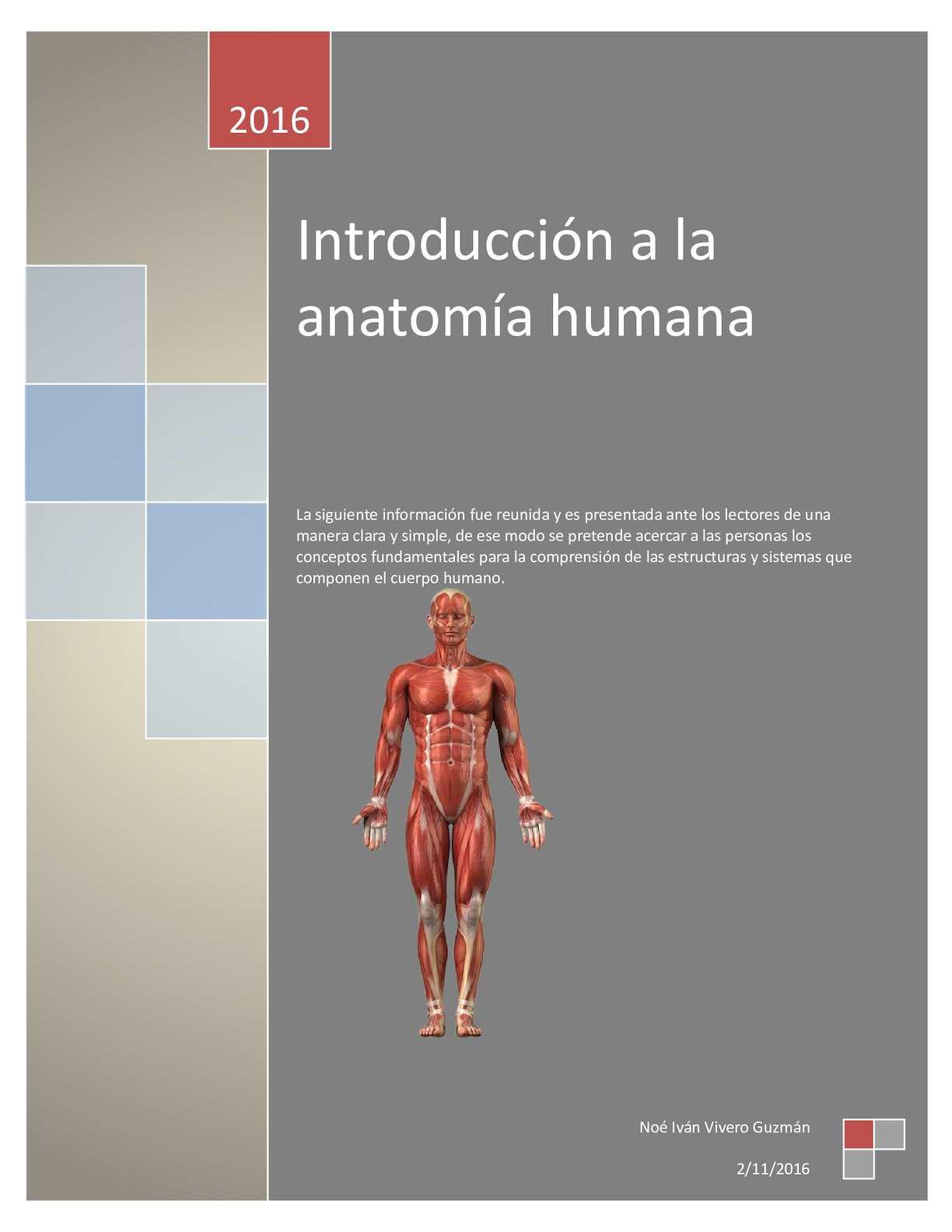 Calaméo - Introducción a la anatomia humana