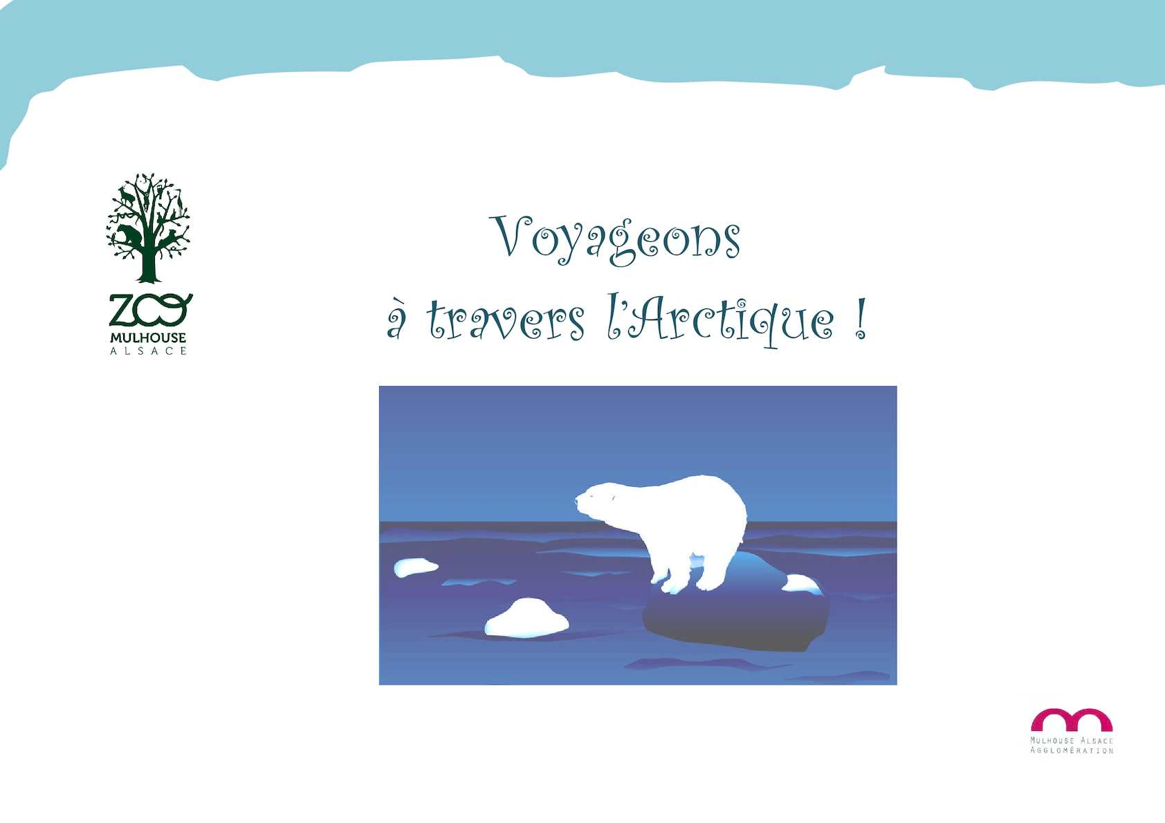 La faune de l'Arctique - Panneau illustré