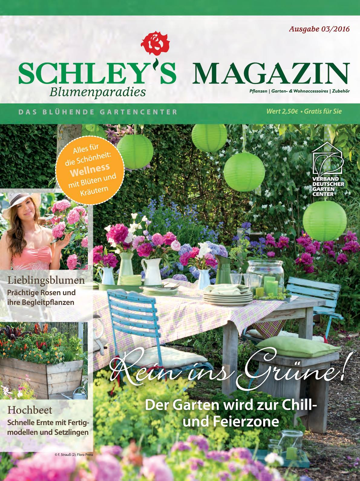 Calameo Schleys Blumenparadies Magazin 3 2016