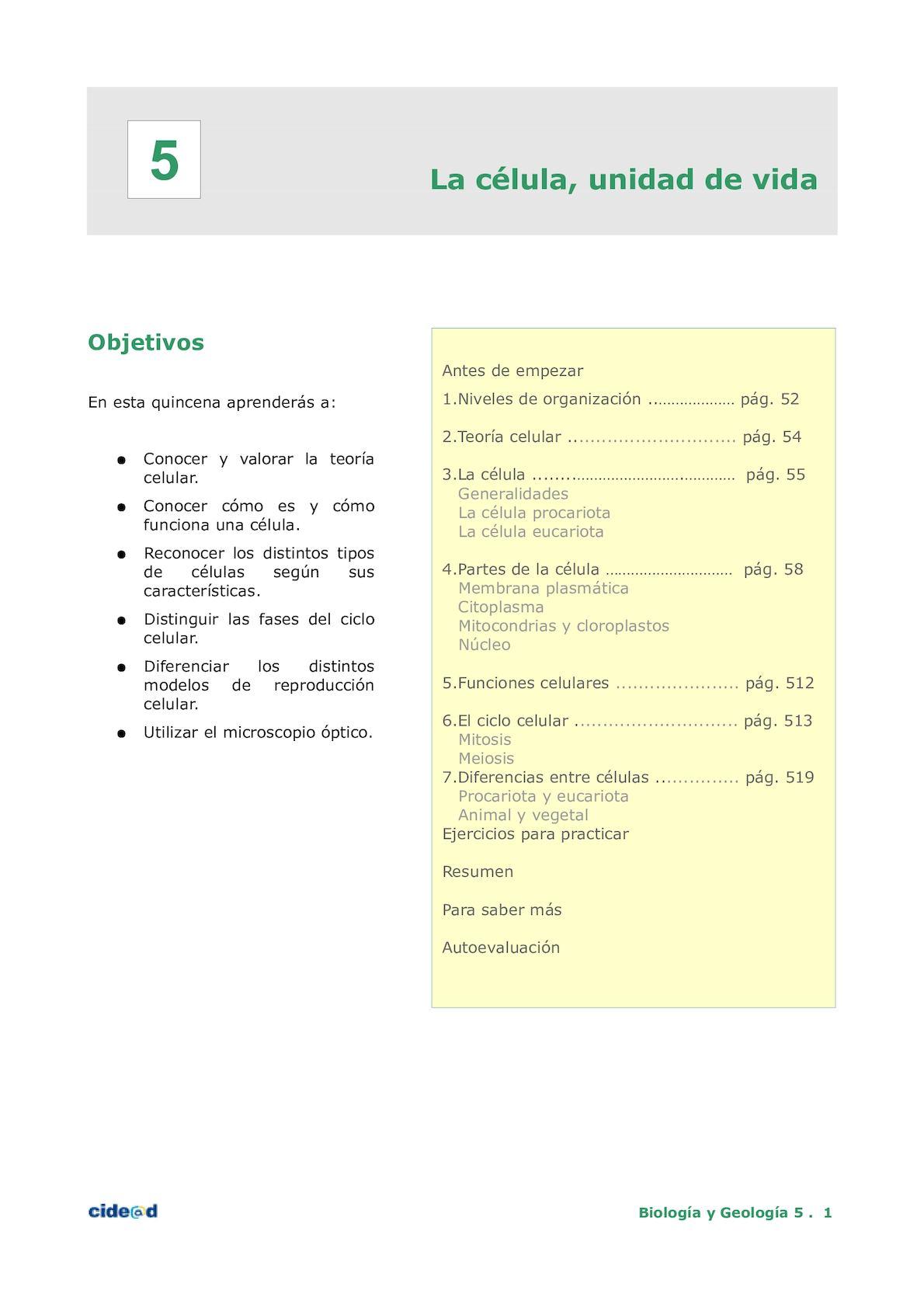 Calaméo - Quincena5