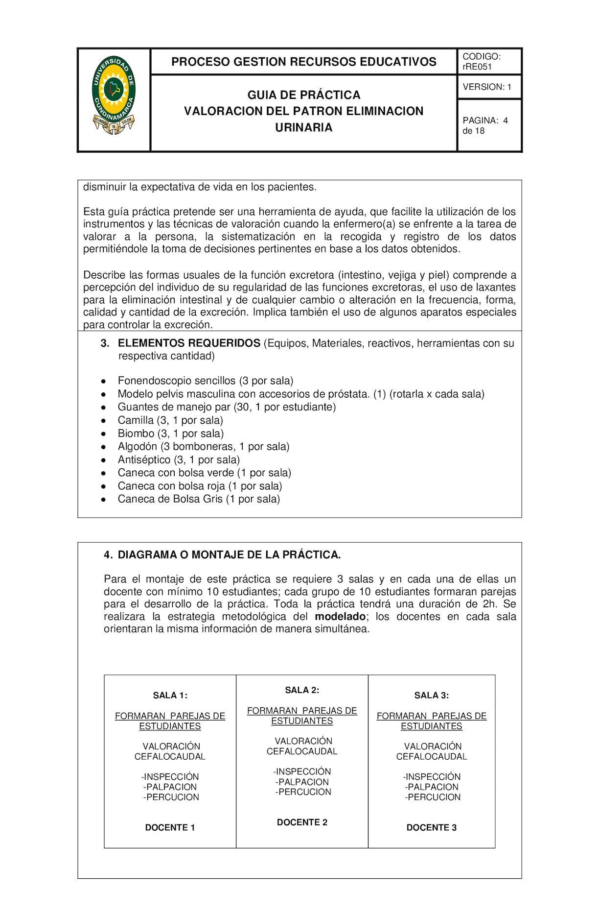 Guia Practica Eliminacion Urinario - CALAMEO Downloader