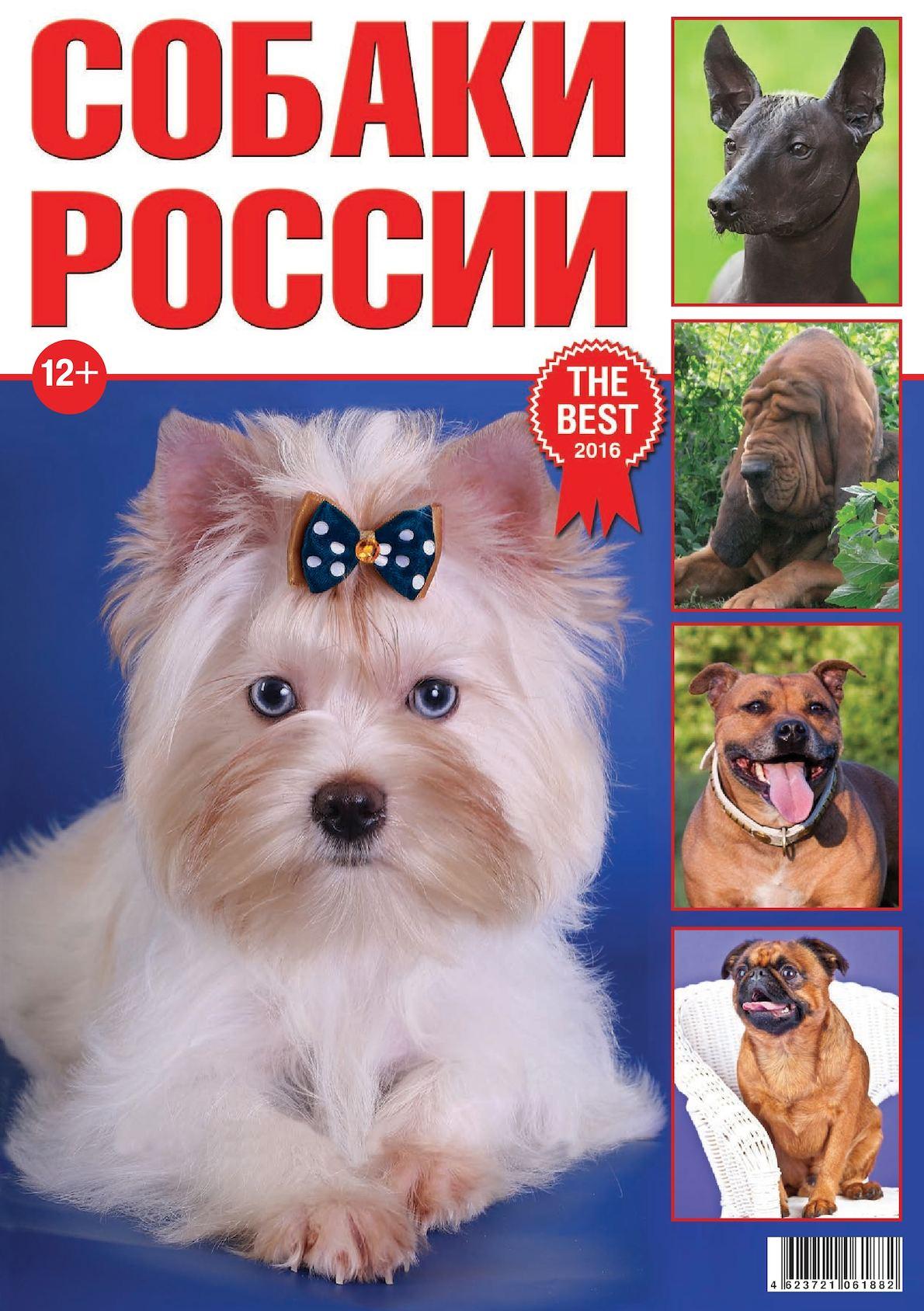 Собаки России 2016