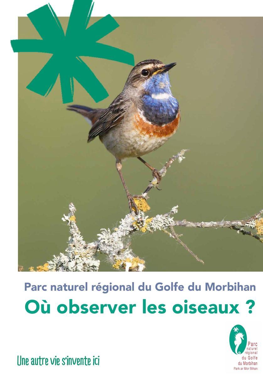 Où observer les oiseaux dans le Parc Naturel Régional du Golfe du Morbihan