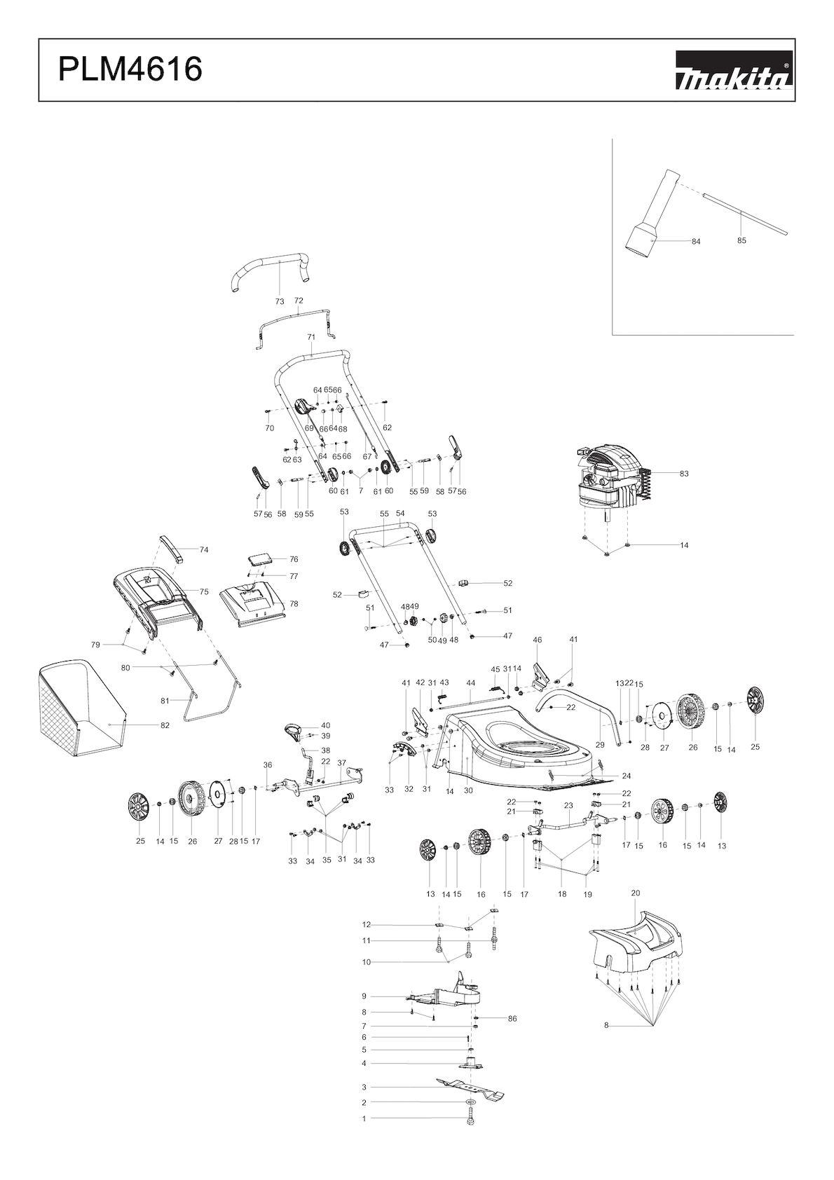 Plm4616