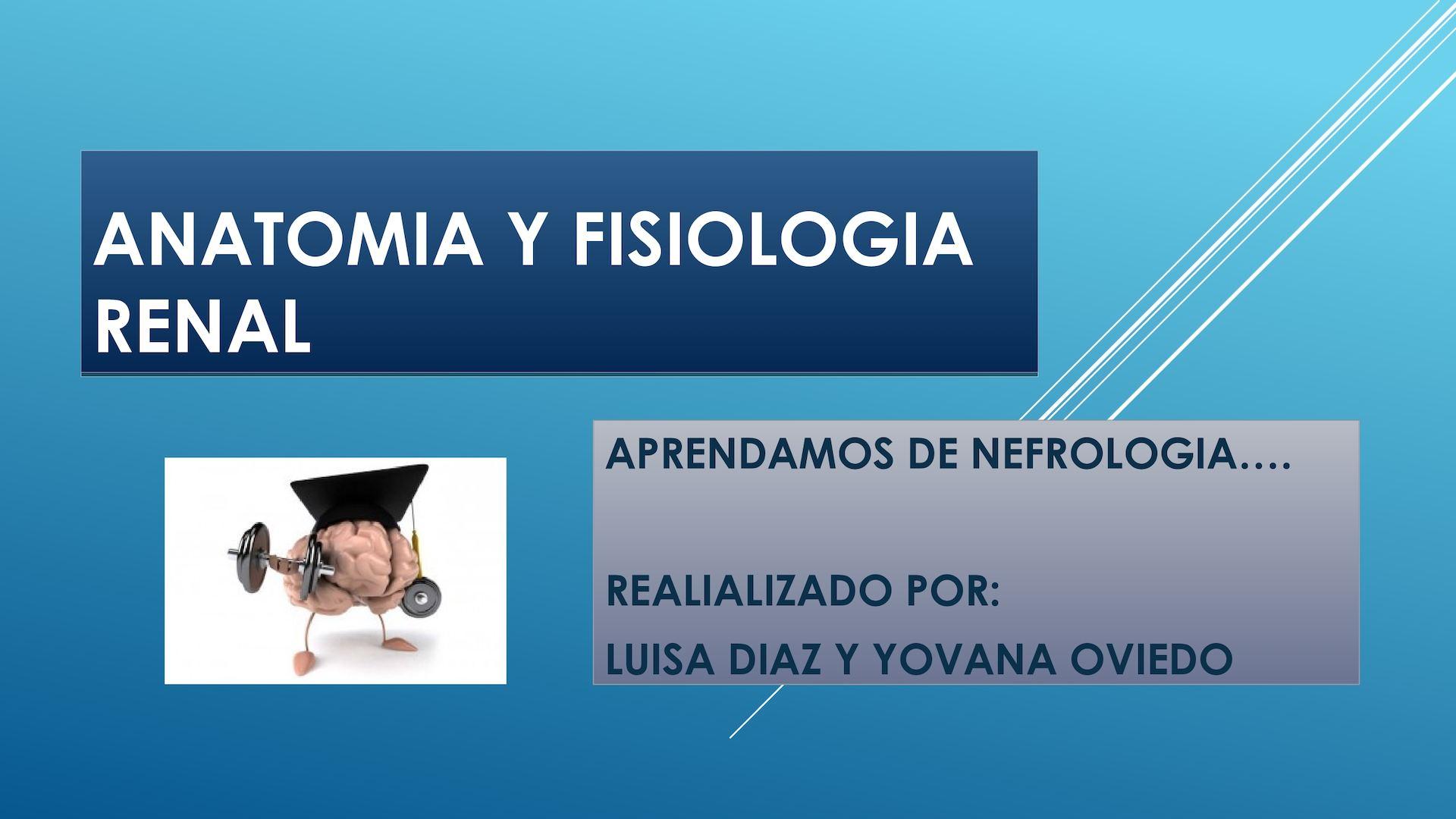 Calaméo - Anatomia Y Fisiologia Renal
