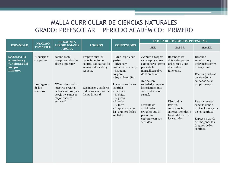 Calaméo - Malla Curricular