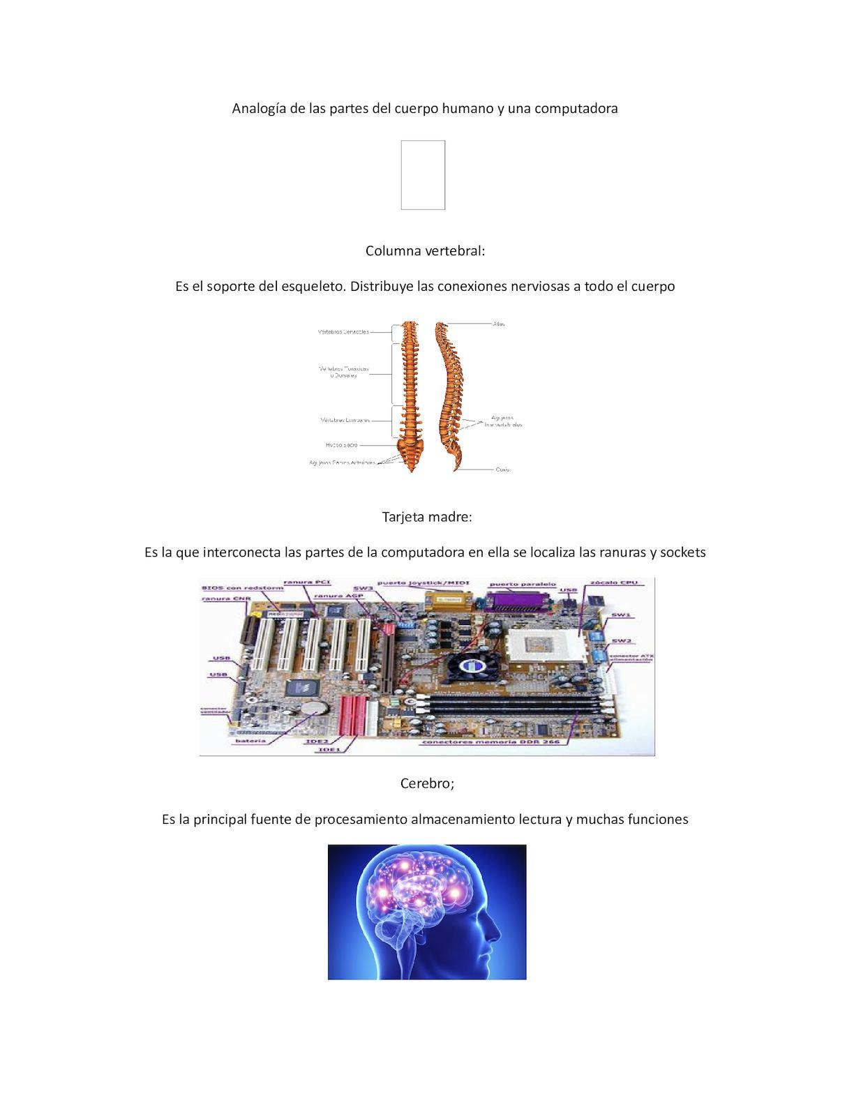 Calaméo - Analogía De Las Partes Del Cuerpo Humano Y Una Computadora