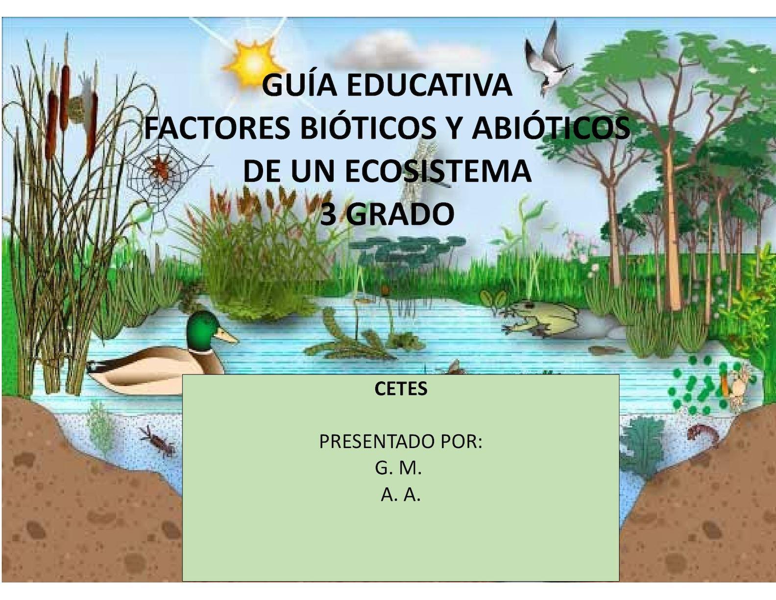 Calam o gu a didactica 3 grado factores bioticos y abioticos for Definicion de cuarto