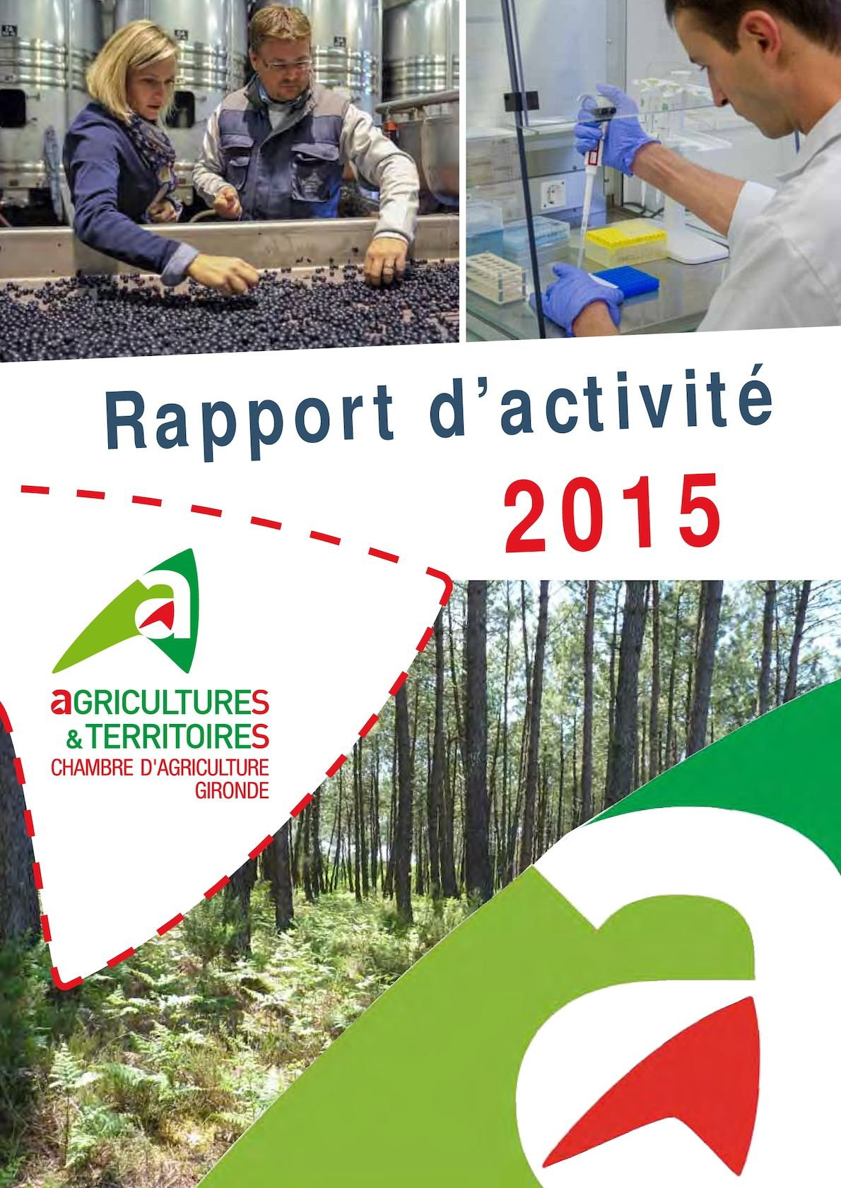calamo rapport activit chambre agriculture gironde