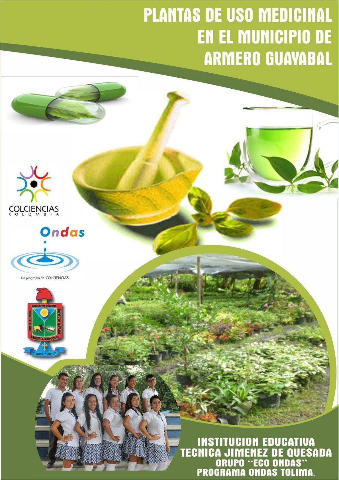 Calameo Plantas De Uso Medicinal En El Municipio De Armero Guayabal
