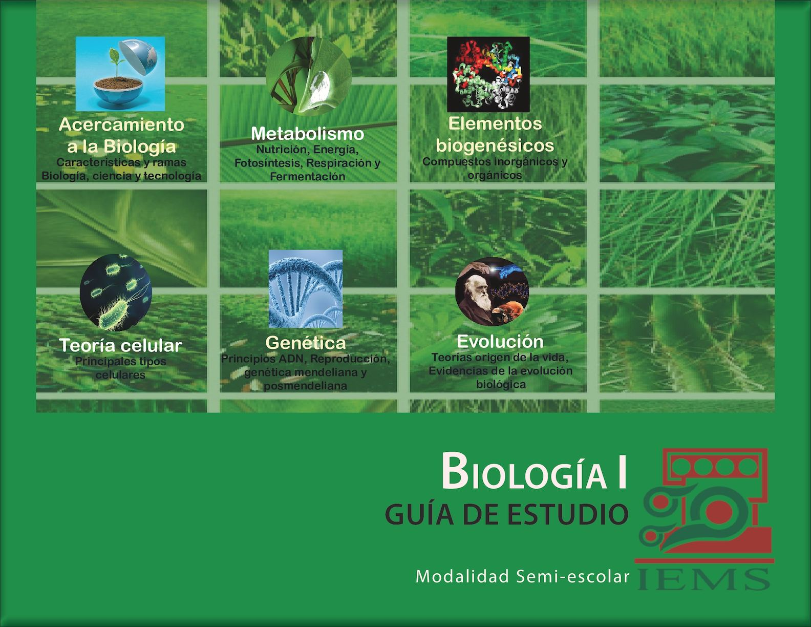 Calaméo - Guia Biologia IEMS