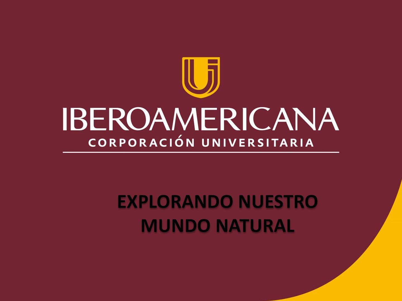 Presentacion Centro De Interes (1)