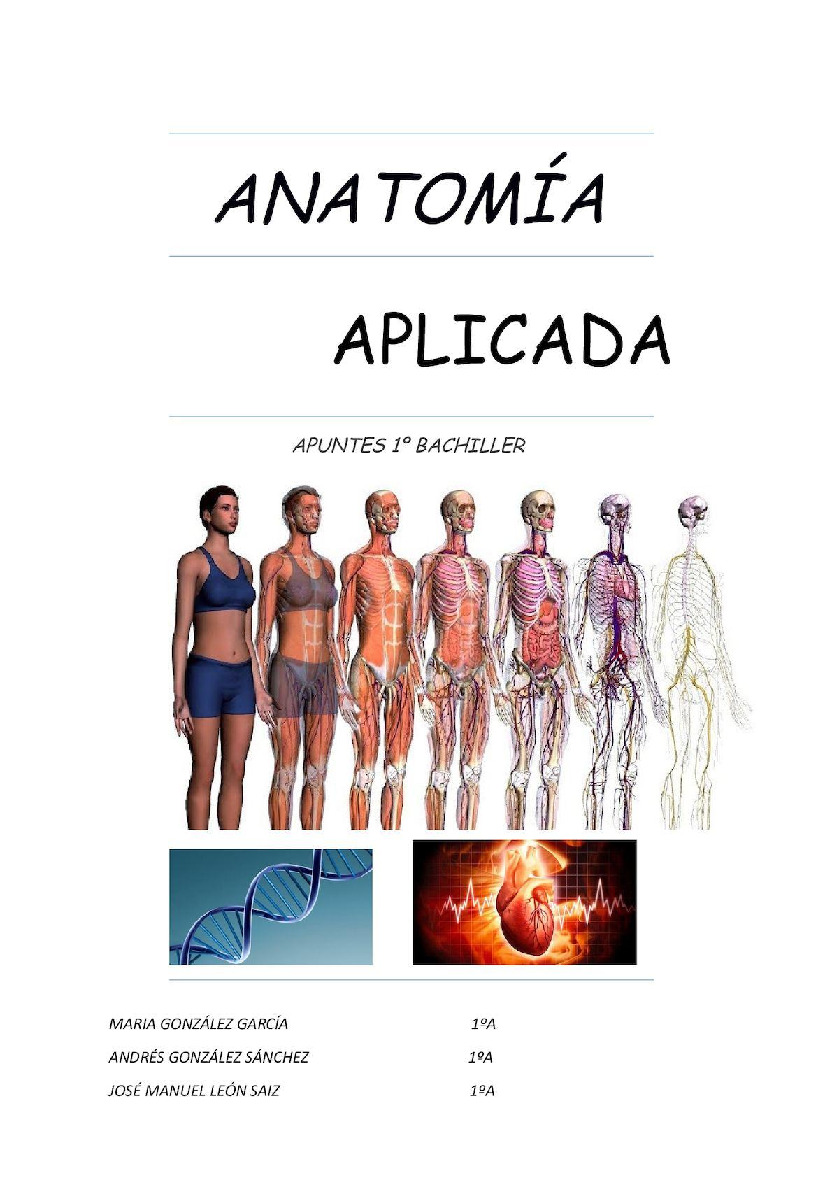 Calaméo - Apuntes Anatomía T 1 Y T 2