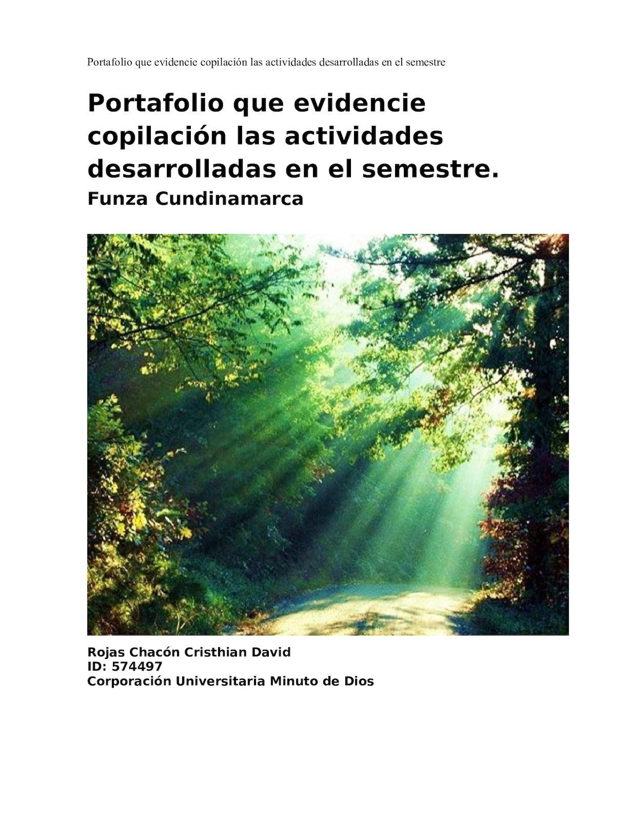 Portafolio Crithian Rojas 574497