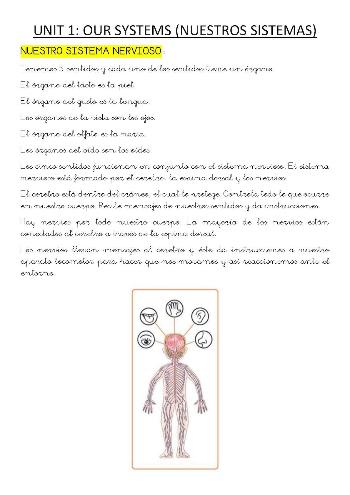 3º Resumen Repaso En Español U1