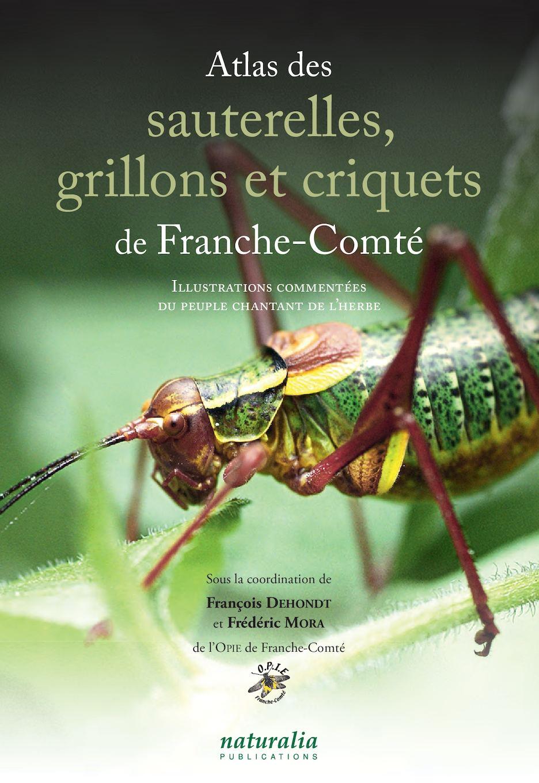 Atlas des sauterelles, grillons et criquets de Franche Comté