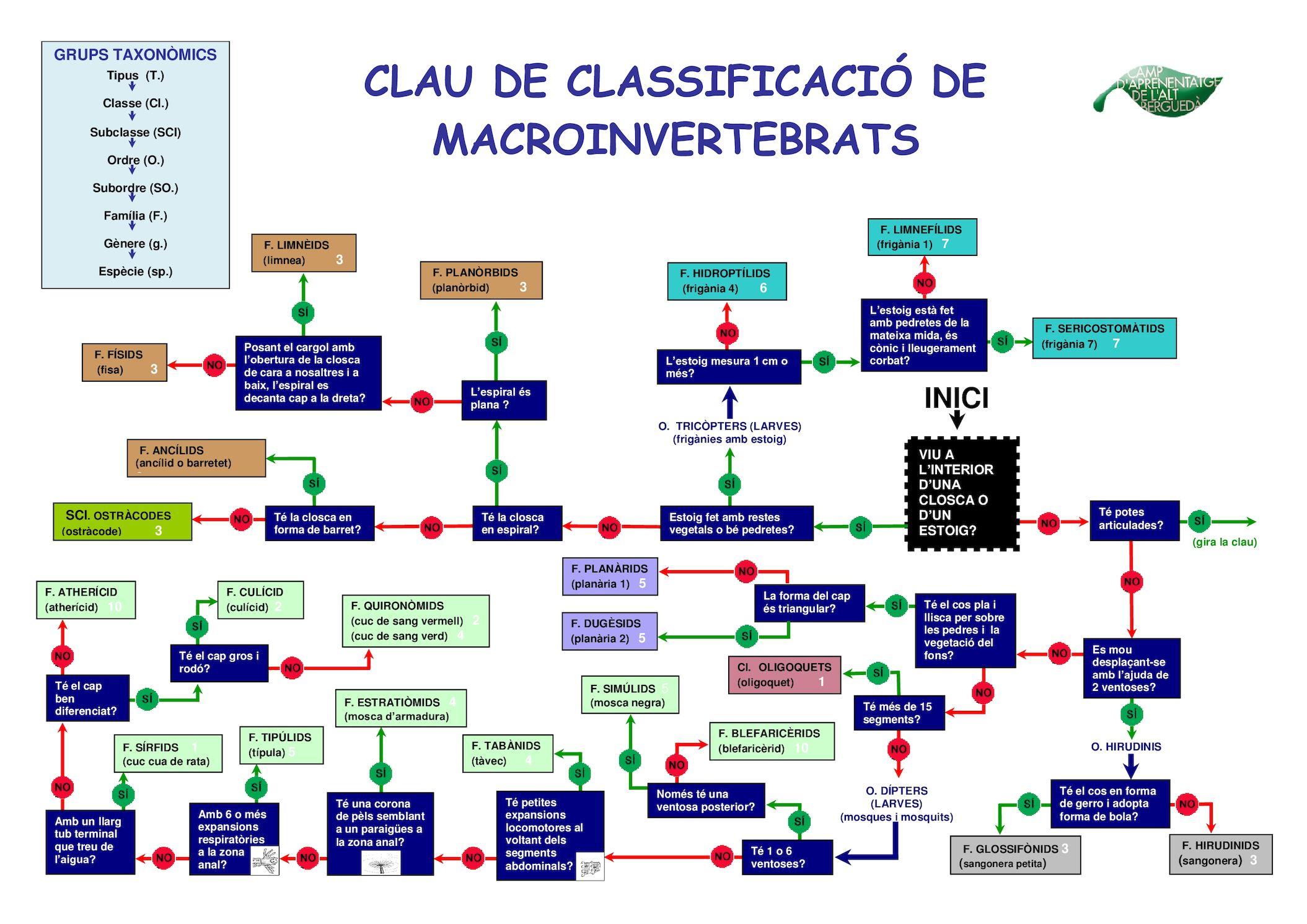 Clau Dicotomica