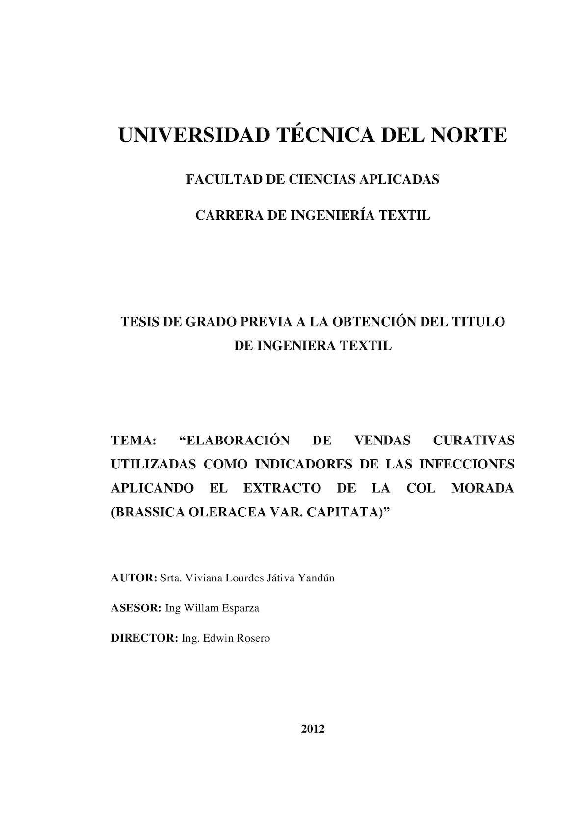 Calaméo - Tesis (2)