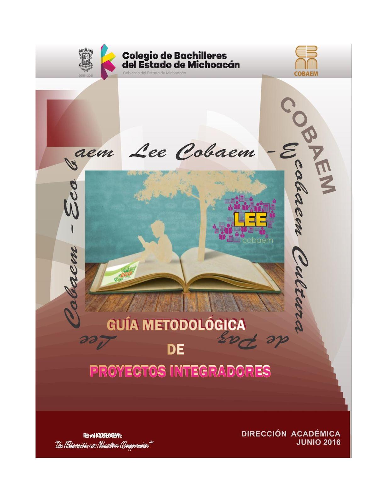 Calaméo - Guia Proyectos Integradores