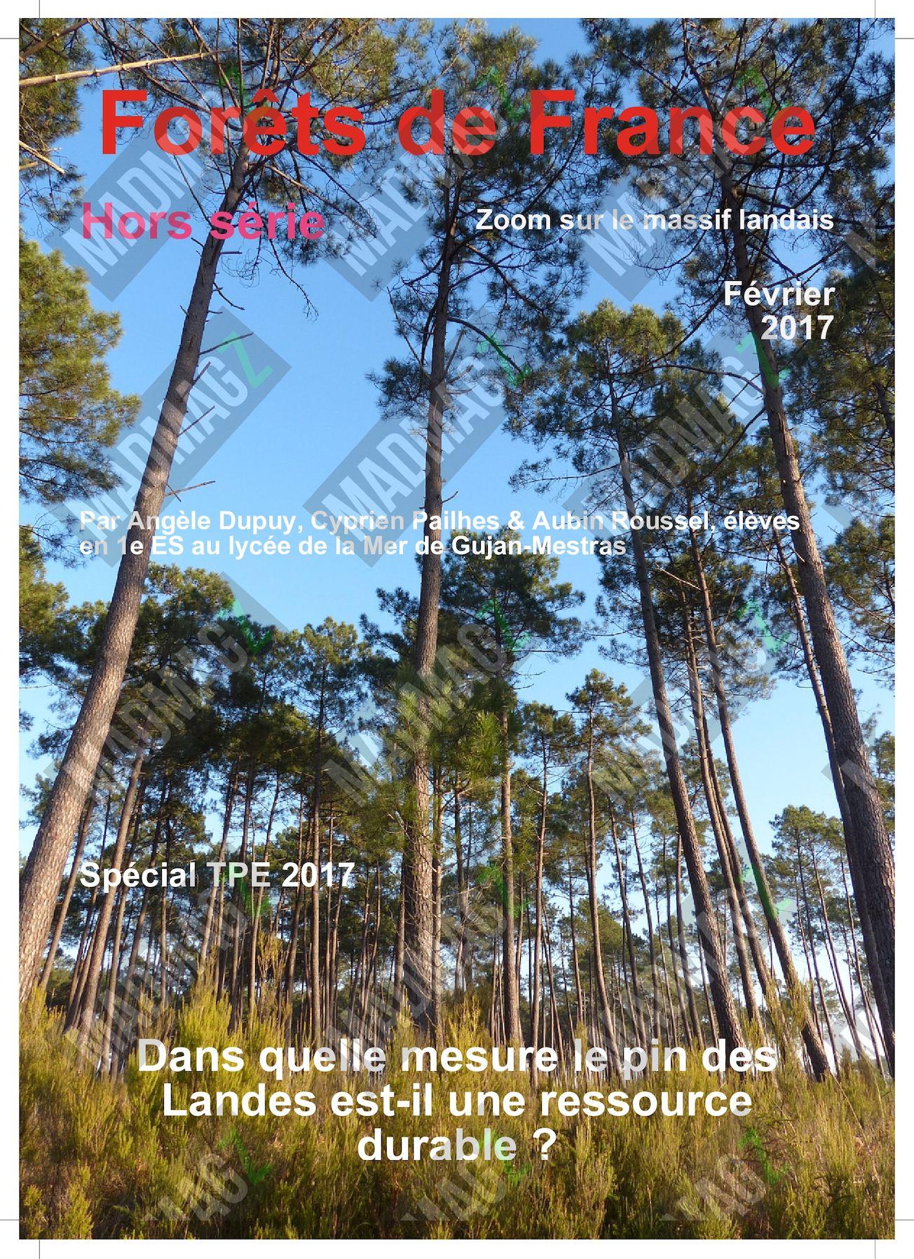 calamo forets de france hors serie special massif landais - Meuble Pour Papier2020