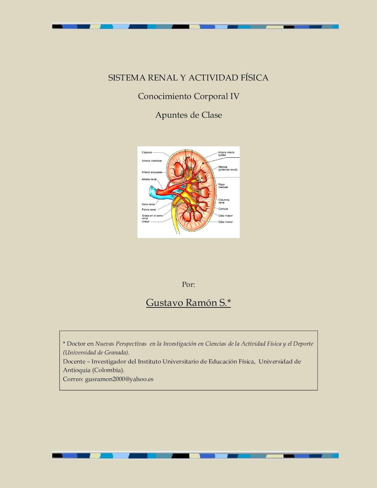 Calaméo - Sistema Renal
