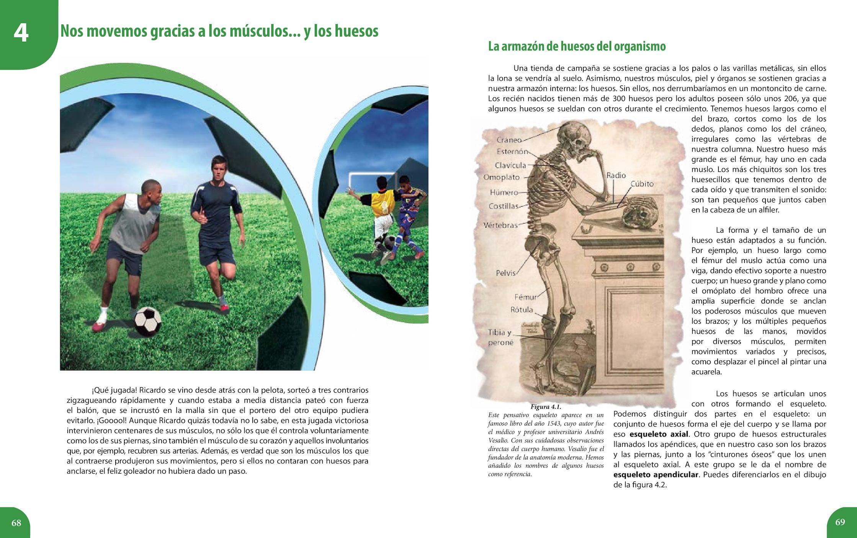 Contemporáneo Fundador De La Anatomía Moderna Ilustración - Anatomía ...