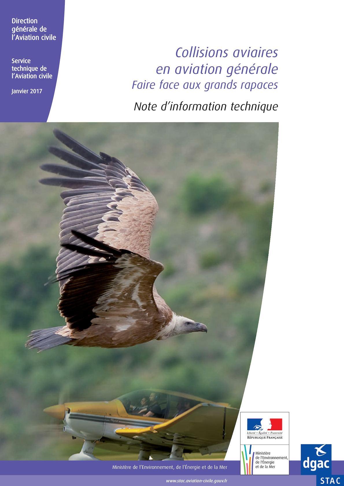 Collisions aviaires en aviation générale : faire face aux grands rapaces