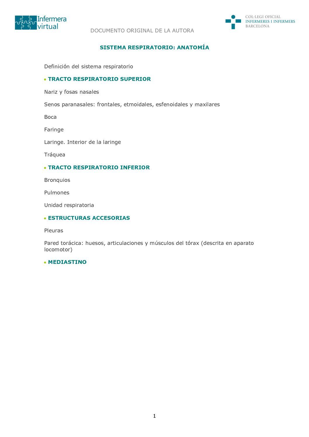 Calaméo - Anatomia Sistema Respiratorio
