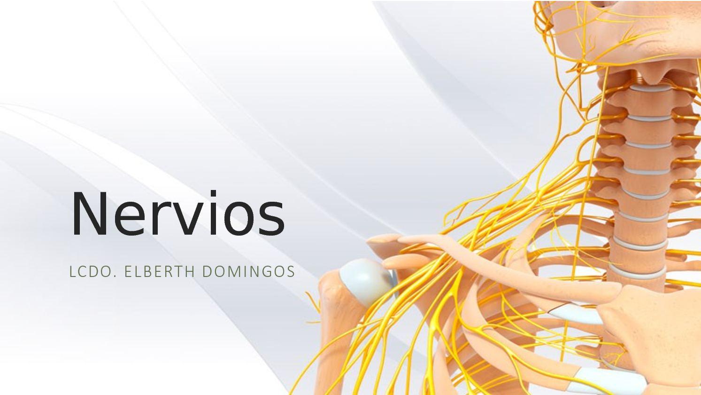 Calaméo - Nervios Perifericos