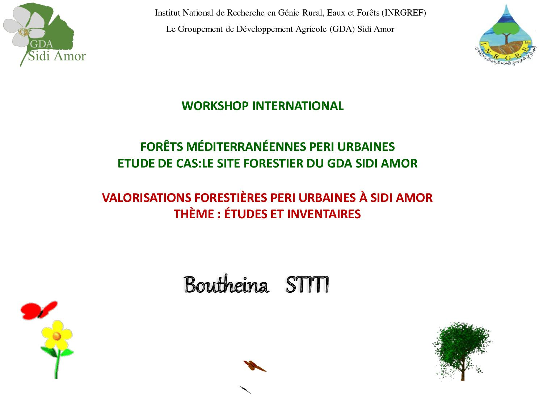 FORET / LE SITE FORESTIER DU GDA SIDI AMOR